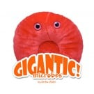 Glóbulo Rojo (Eritrocito) Gigante