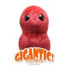 Dolor de Garganta (Estreptococo) Gigante