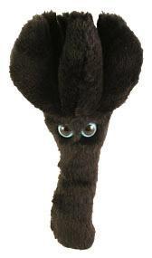 Stachybotrys (Stachybotrys chartarum)