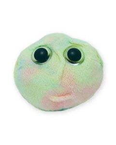 Stem Cell doll