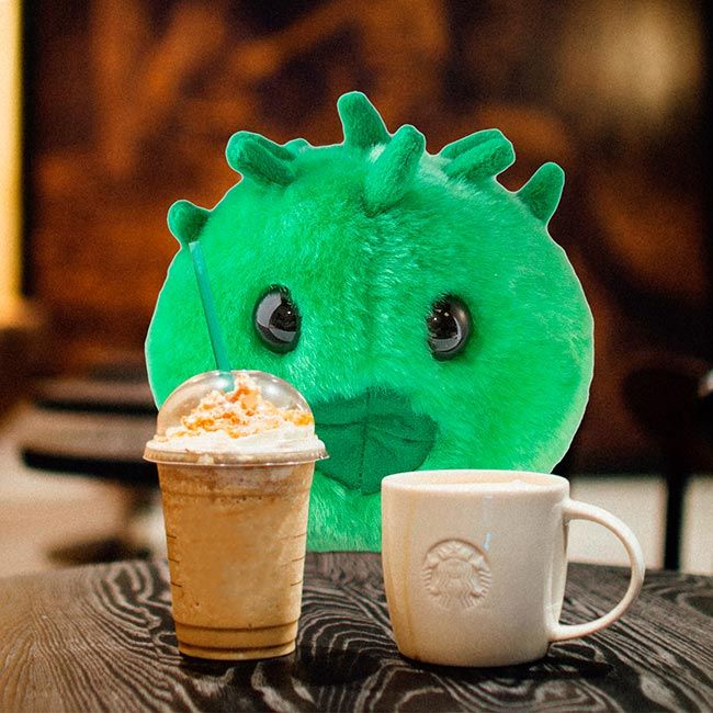 Chlamydia with coffee