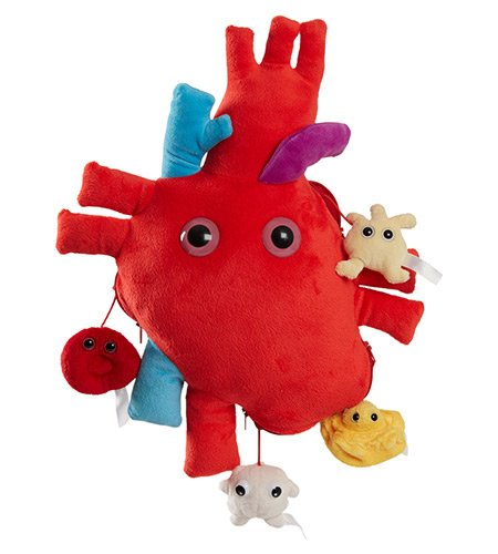 GIANTmicrobes Heart organ XL