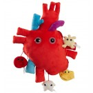 Heart XL Size with Minis
