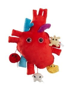 Deluxe Heart with Mini Cells