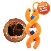 DNA Key Ring 12 Pack