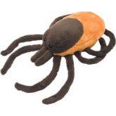 Lyme Disease (Borrelia burgdorferi)