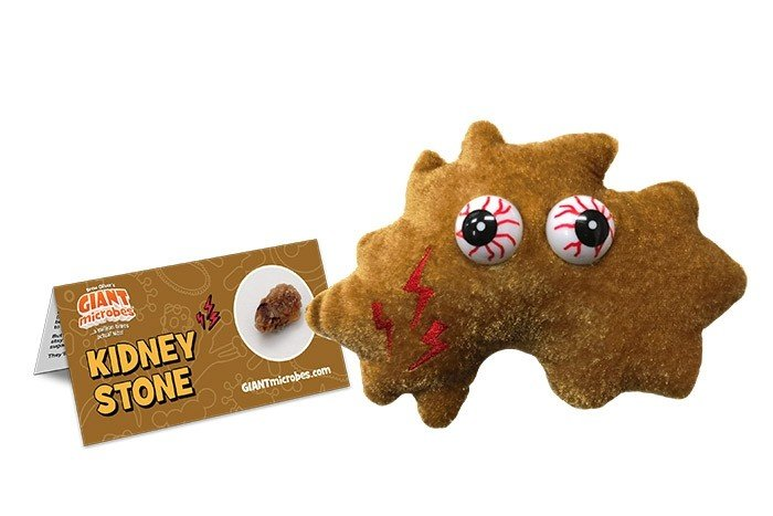 Kidney Stone plush doll
