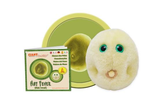 Hay Fever (Grass pollen)