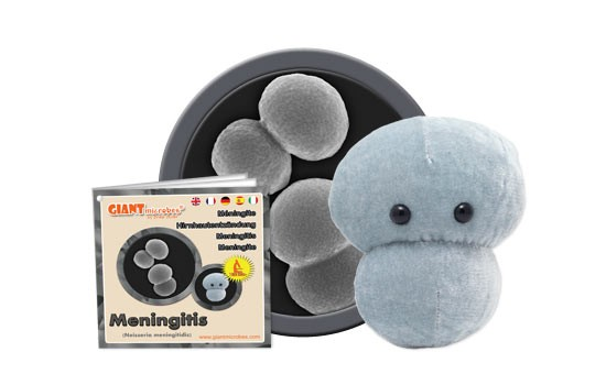 Meningitis plush doll