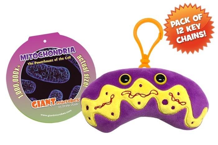 Mitochondria KC pack