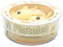 Platelet (Thrombocyte) Petri Dish