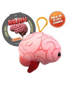 Brain Key Ring Pack