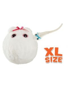 Egg Cell XL & Mini Magnetic Sperm Cell
