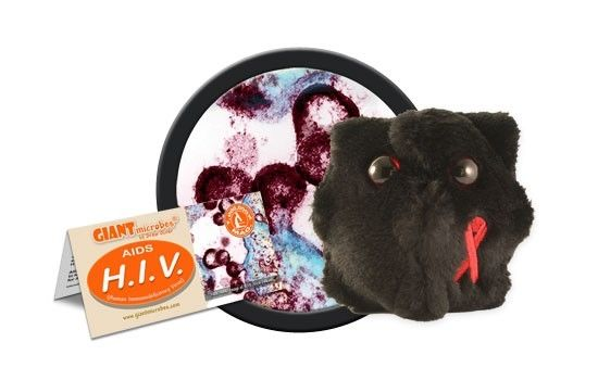 HIV cluster