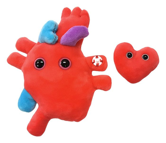 Heart-to-Heart detached mini