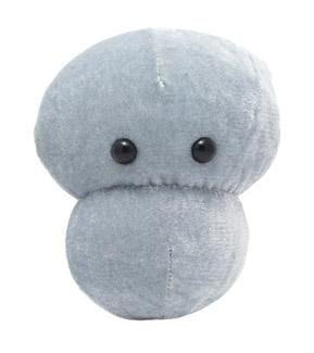 Meningitis plush doll