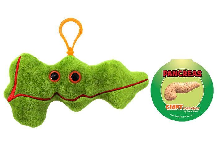 Pancreas with tag