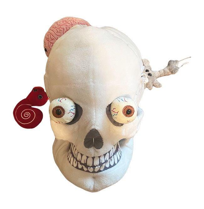 Deluxe Skull front