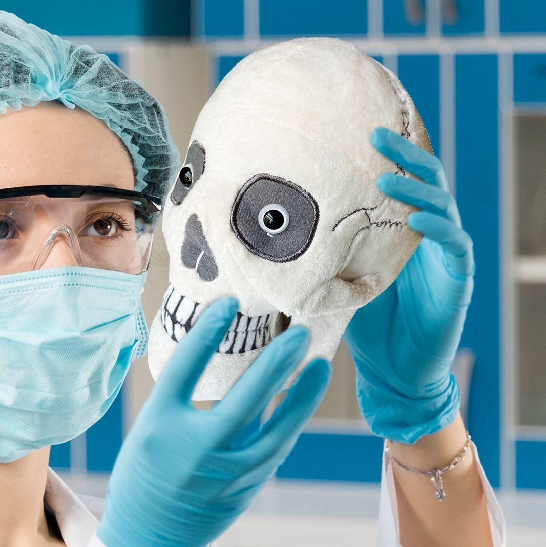 Skull plush with scientist