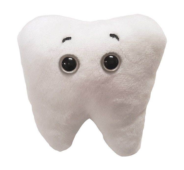 Tooth front