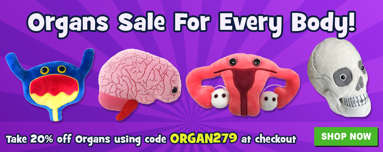 GIANTmicrobes Organs Sale for Every Body