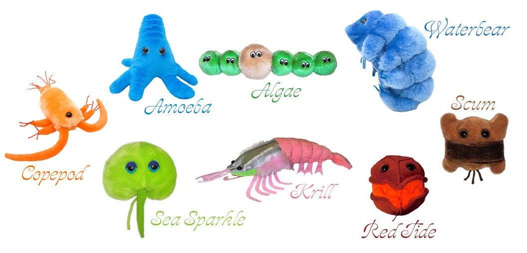 Giant Microbes Little Creatures