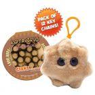 Rotavirus Key Chain 12 Pack