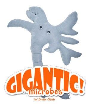 """Brain Cell Gigantic 24"""""""