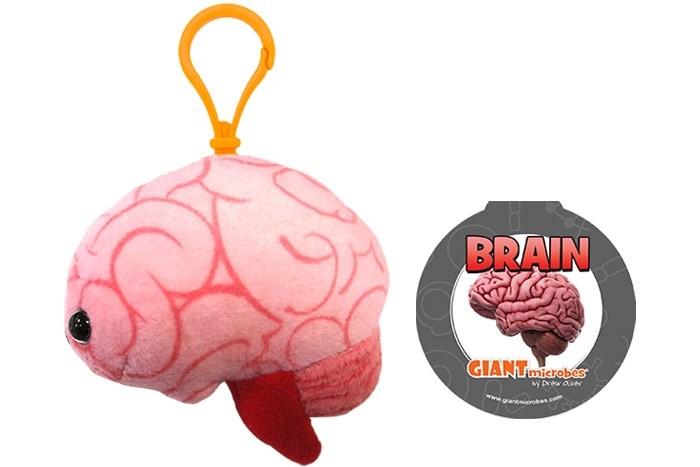 Brain key chain