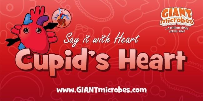 Cupid's Heart