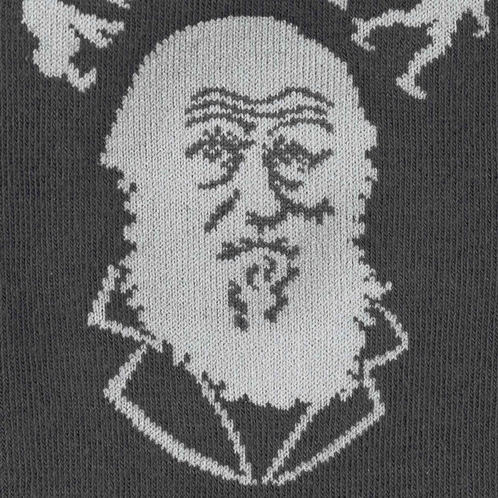 Darwin socks