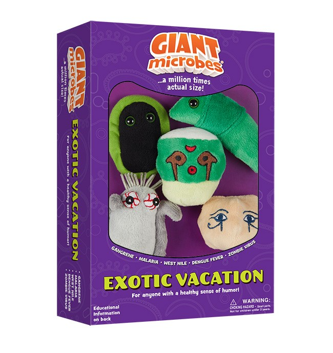 Exotic Vacation box