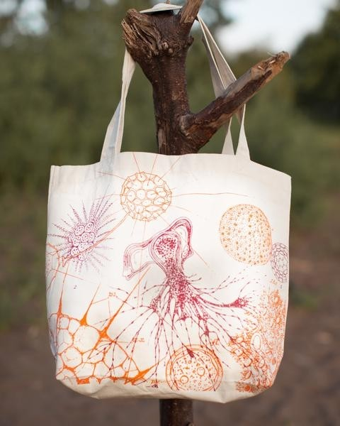 Microbiology tote