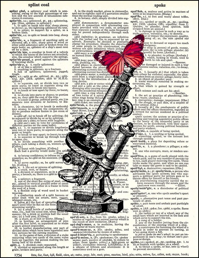 Microscope with Butterfly print