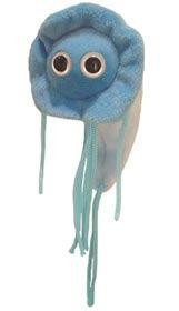 Giardia microbe