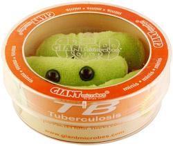 TB (Tuberculosis) Petri Dish