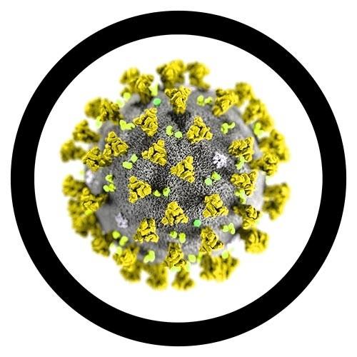Coronavirus COVID-19 gigantic