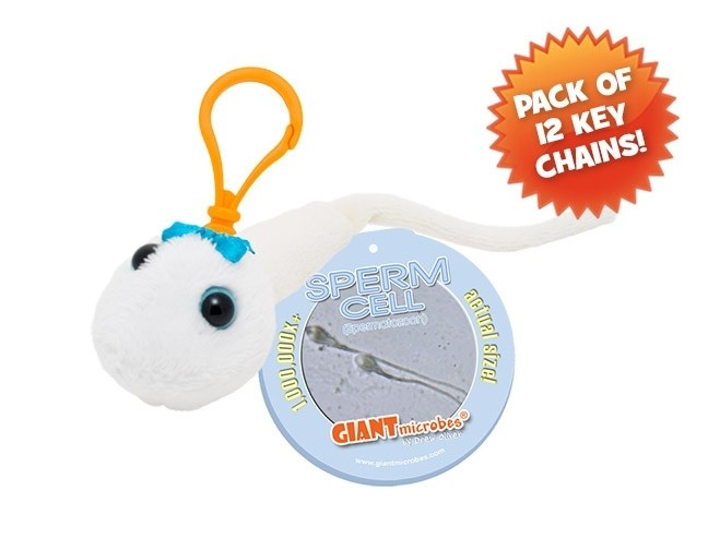 Sperm Cell Key Chain pack