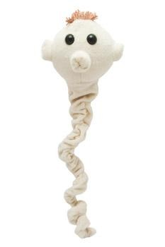 Tapeworm plush doll
