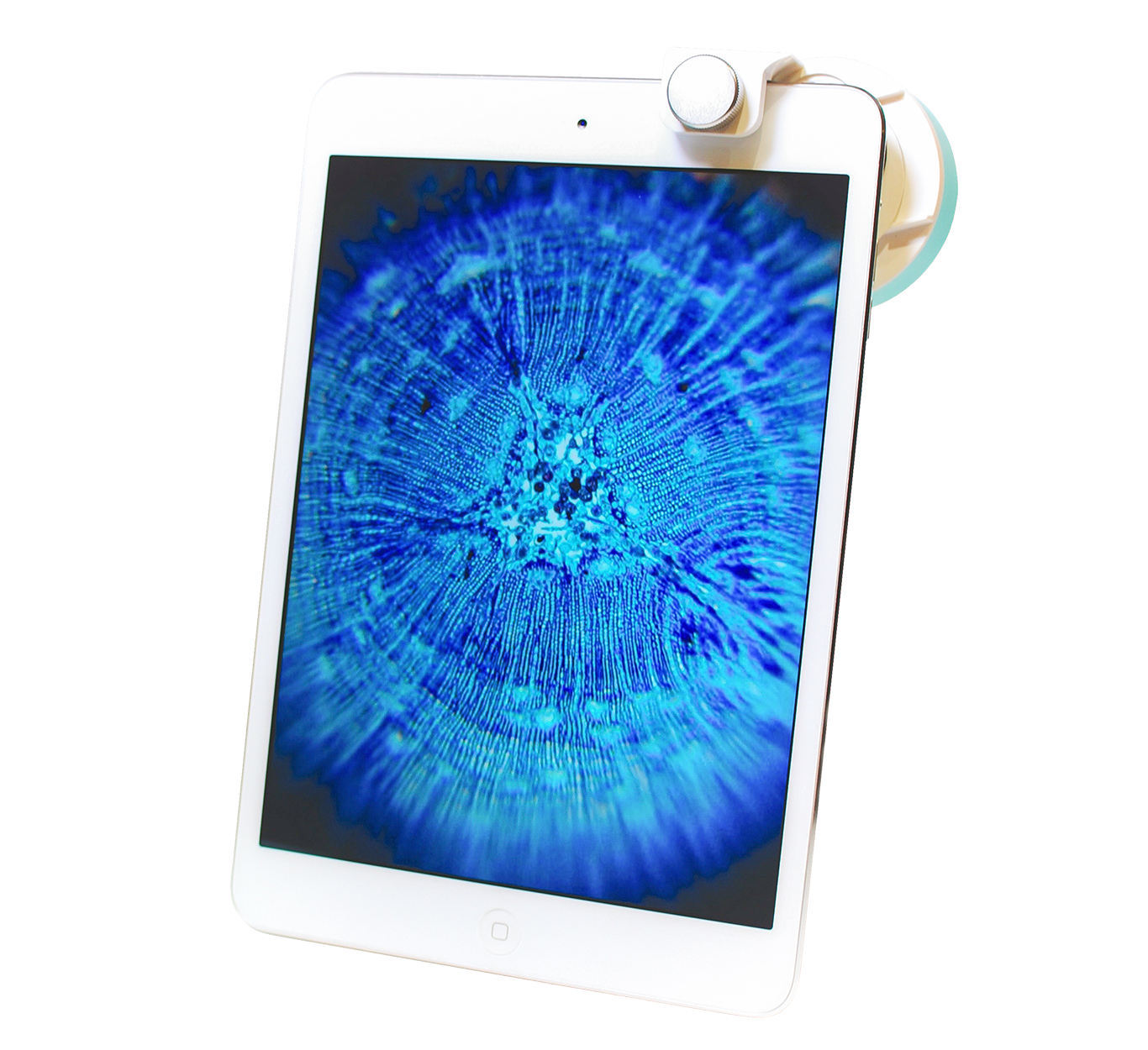 Smartphone Microscope image