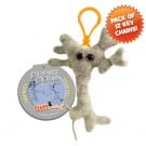 Brain Cell Key Chain 12 Pack
