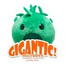 """Chlamydia Gigantic 12"""""""