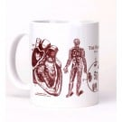 Heart Anatomy Mug