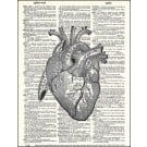 Heart Dictionary Print