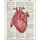 Heart Red Dictionary Print
