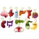 Organs Set Mini 12-pack