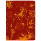 Microbiology Softcover Notebook