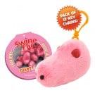 Swine Flu Key Chain 12 Pack