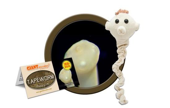 Tapeworm plush doll