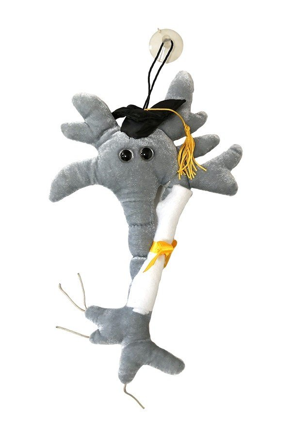 Grad Brain with Diploma plush doll
